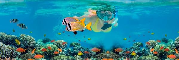 snorkeling_in_puerto_morelos_banner